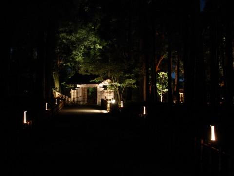 偕楽園萩祭り01