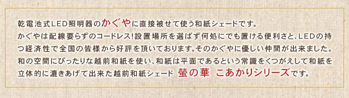 和紙シェドこあかり画像02